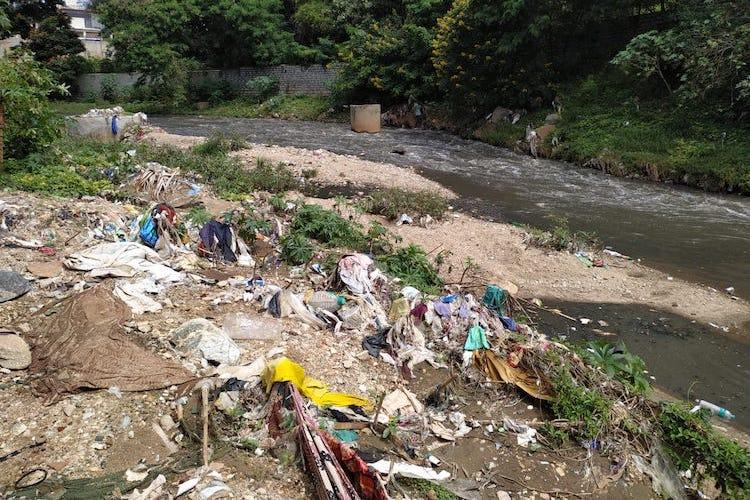 Tree felling illegal dumping of debris destroying river in Bangalore Uni campus