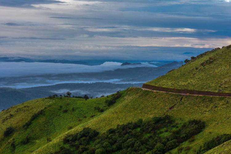 The Western Ghat range covered in greenery