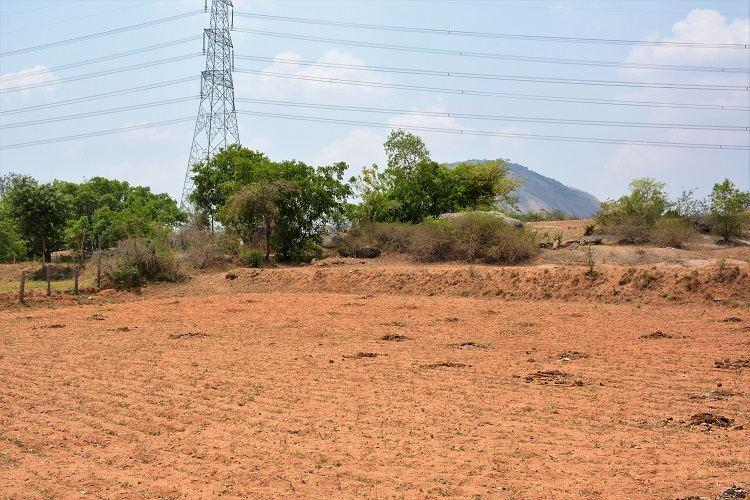 As rivers and borewells run dry farmers in south Karnataka desperately pray for rains