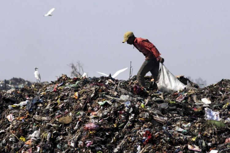 A man picking waste from a giant garbage dump