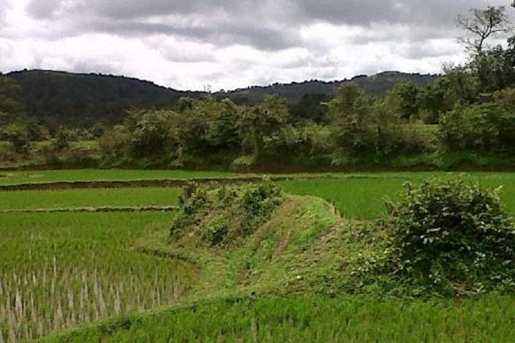 Declare Western Ghats as Eco-Sensitive Area Petition urges Karnataka CM