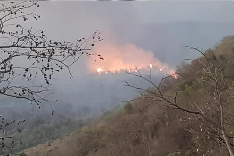 3 arrested for causing forest fire in Salems Yercaud foothills