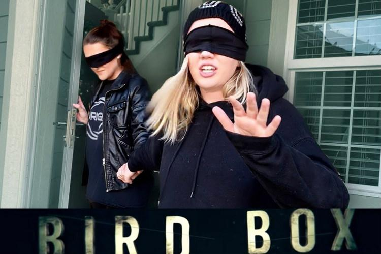 YouTube revises guidelines to address dangerous pranks like Bird Box challenge