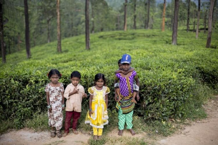 In pics A Kerala journalist captures life of tribals in TNs Gudalur valley