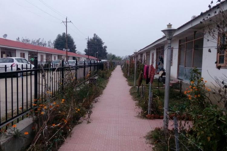Refugees at home Back to Kashmir from exile Pandits continue to suffer in rehab colonies