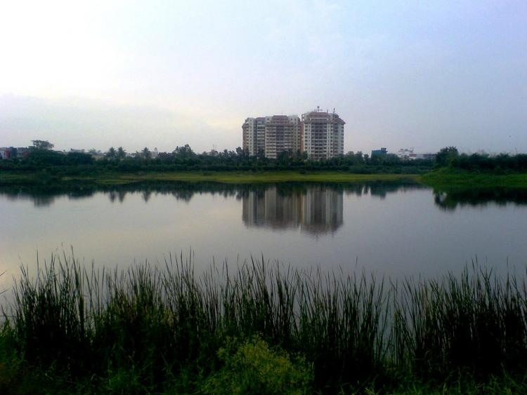 Next time think twice before you want an apartment over-looking a lake in Bengaluru