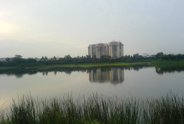 Maintenance of 60 Bluru lakes transferred to BBMP BDA cashless