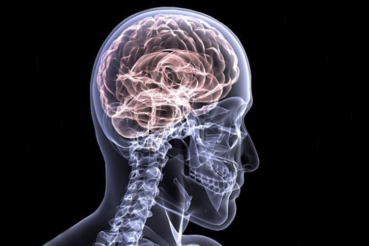 Can a healthy lifestyle reduce risk of Alzheimers disease Yes say new studies