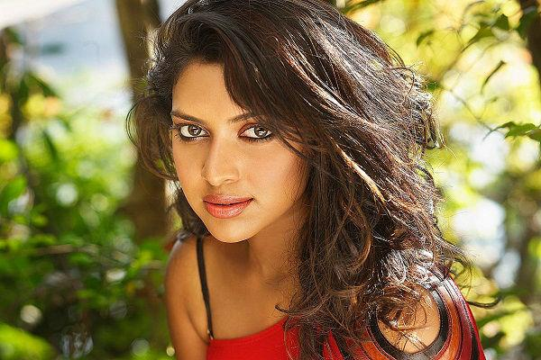 Amala Paul to team up with superstar Rajinikanth in upcoming film