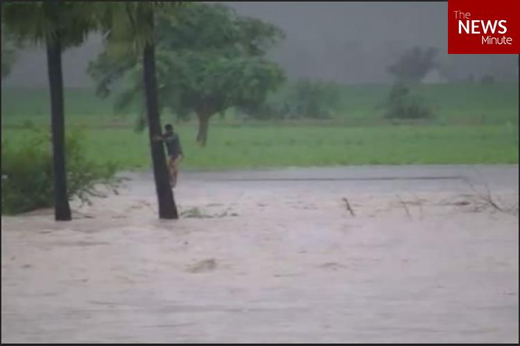 Andhra teen displays courage in swirling floodwaters clings on to tree for 8 hours