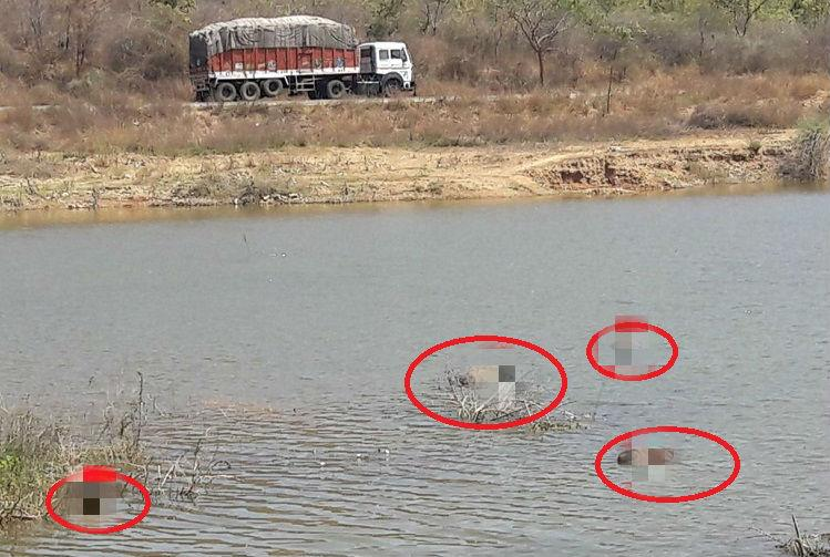 5 bodies found floating in Andhra lake police yet to identify dead