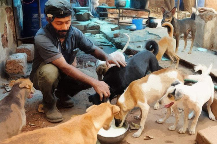 Humiliated harassed taunted What Chennai animal rescuers face from neighbours