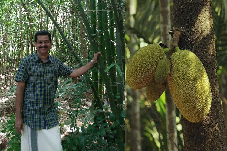 Meet the man who got Kerala govt to declare jackfruit as the states official fruit