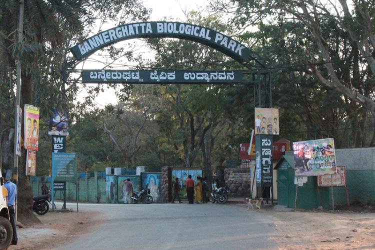 Entry to the Bengaluru Bannerghatta Biological Park