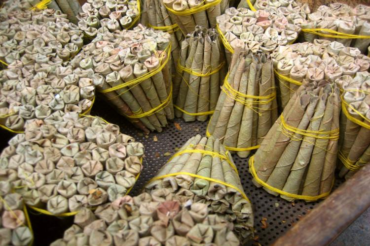 Revenue from beedi leaf sale in Telangana to see three