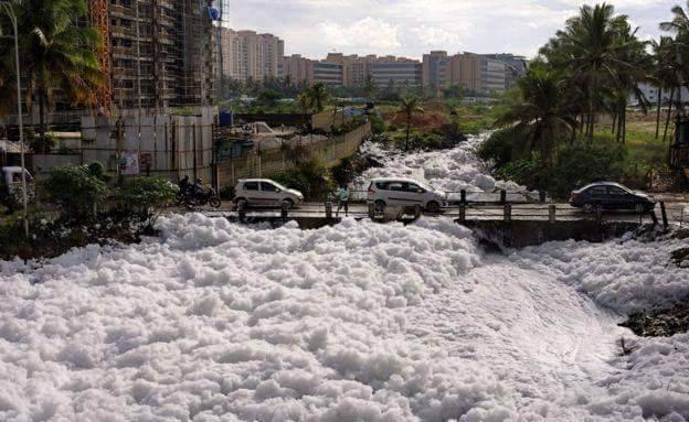 An Open Letter to Bengalureans from Bellandur Lake