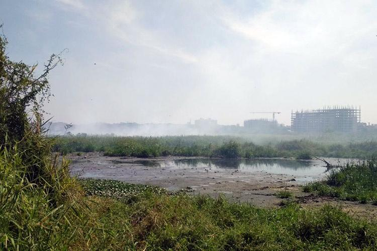 Somebody has to resign Bellandur residents fume over lake fire