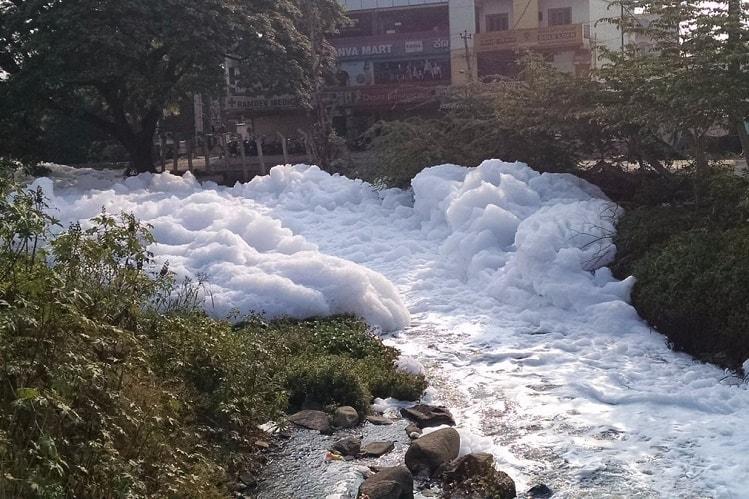 Bellandur lake deweeded dewatered but Bengaluru agency behind schedule to desilt