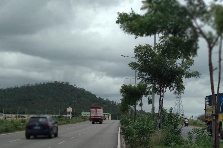 Win for green activists NHAI to transplant trees while widening Bengaluru-Mysuru highway