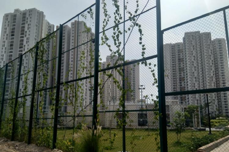 many towers of an apartment complex in bangalore prestige falcon city konankunte
