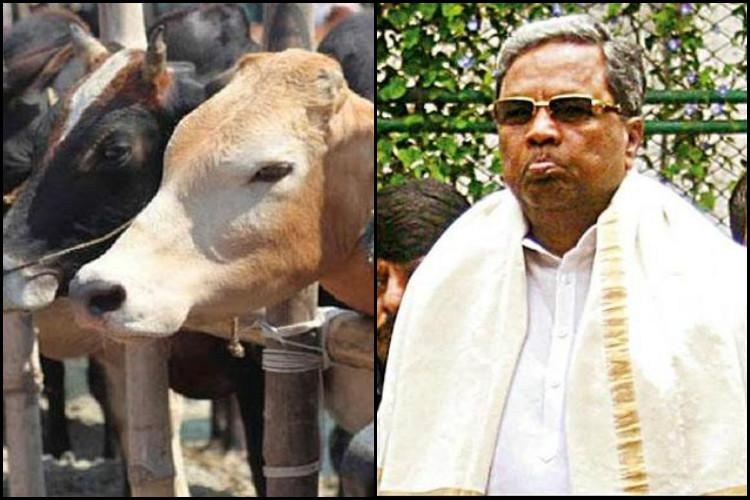 After Kerala Karnataka likely to approach court over Centres cattle slaughter ban