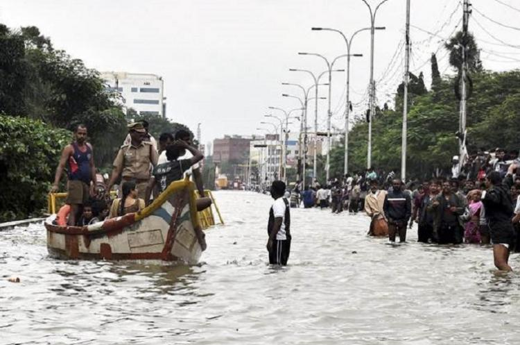 Shrinking wetlands green cover have exposed Chennai to climate risks