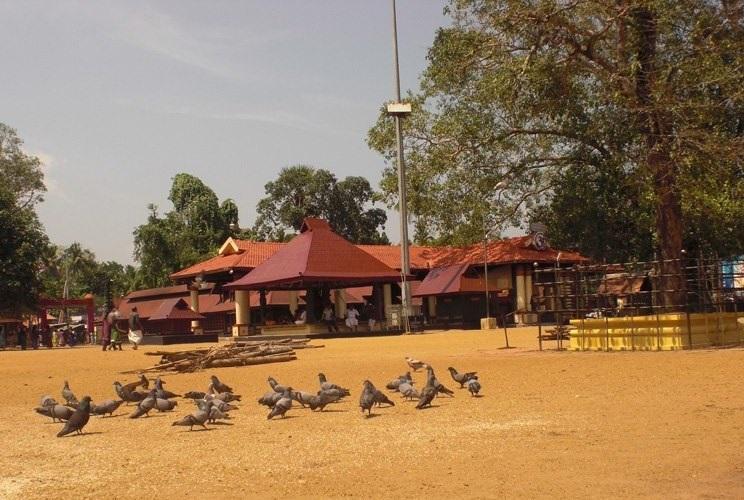 Afraid of angering the goddess Kerala temple denies job to non-Brahmin priest