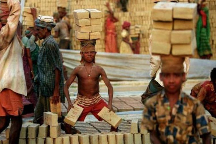 In Telangana adolescents aged 15 to 18 most engaged in child labour Govt report