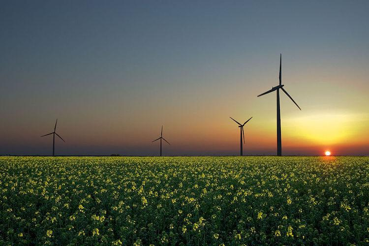 India among top five countries globally in clean energy revenues