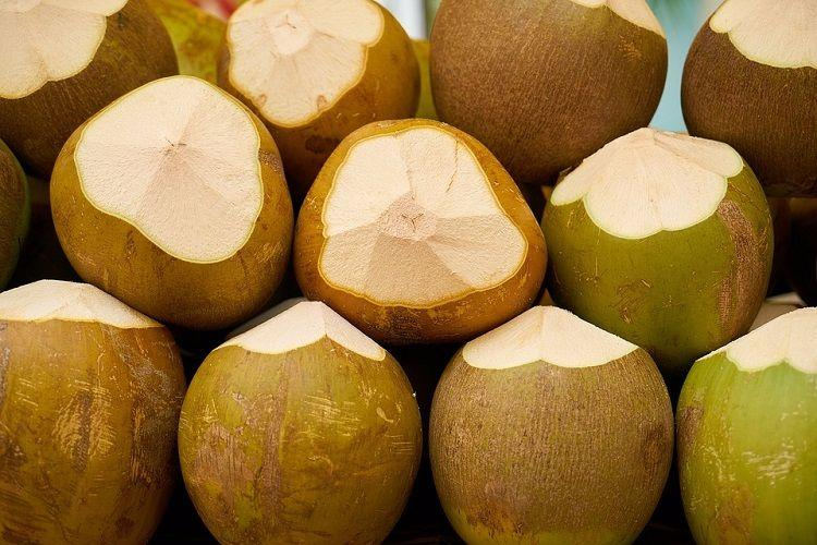 Coconut water in flavours Hassan district plans to promote drink the eco-friendly way