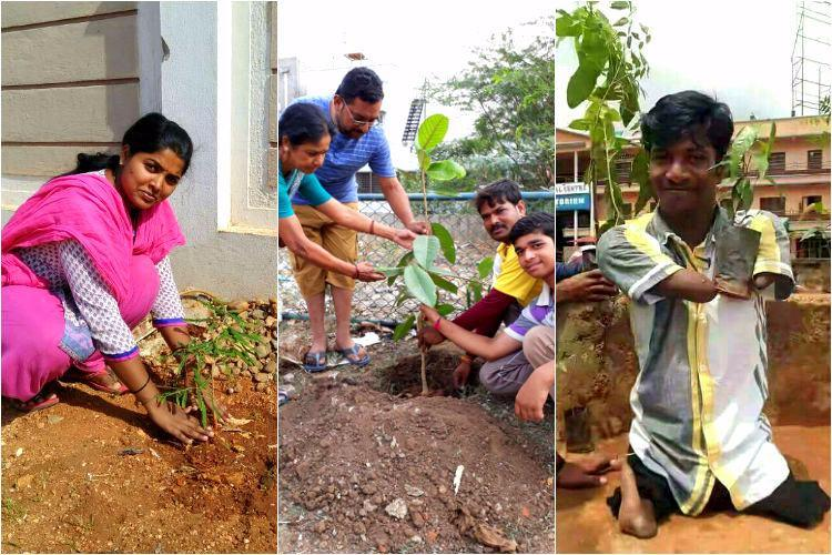 Green Bengaluru Techie starts WhatsApp campaign urging people to plant saplings and post pictures