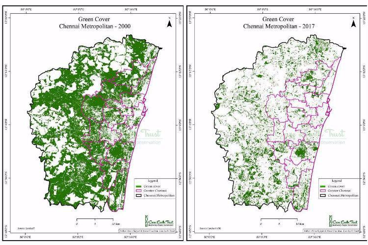Why Chennai needs greenery typical to its landscape and not exotic species