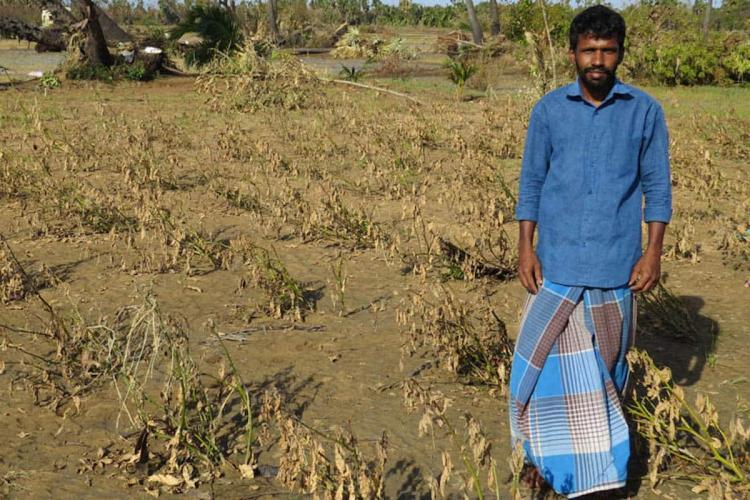 Two years on coastal farmers in Tamil Nadu yet to recover from Cyclone Gaja