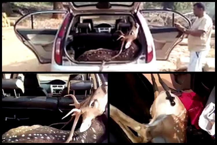 Telangana deer poaching case Police arrest two more including local TRS leader
