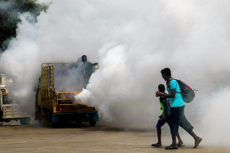 Danger of the second attack Kerala faces a new challenge in dealing with dengue