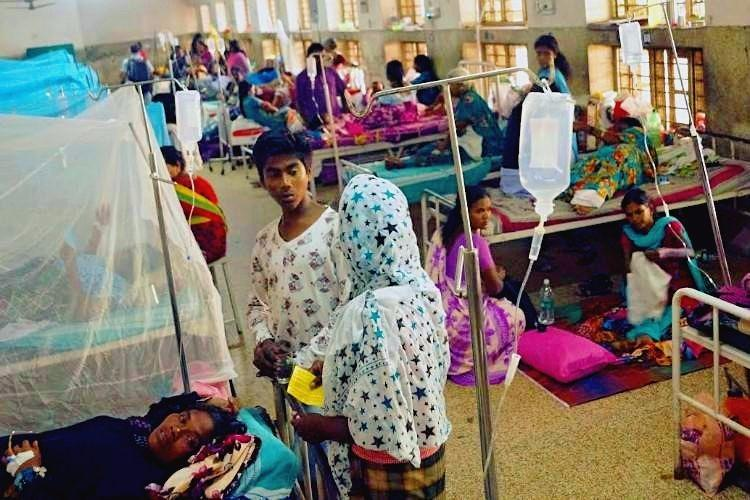 The Dengue map of Kerala How the virus gripped the state with 1314 cases in just one week