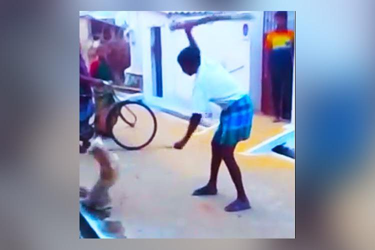 Man brutally thrashes dog to death in front of 2 kids in horrific video Chennai cops to probe