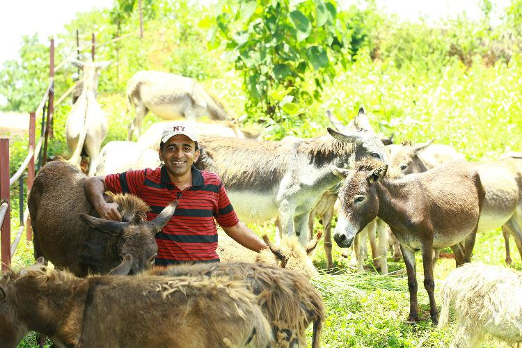 Aby Baby and his 20 jennies The Kerala farmer who wants a donkey milk revolution in India