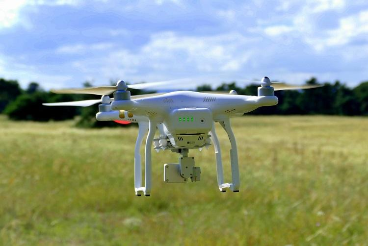 Andhra mulls use of drones to spray pesticides protect standing crops