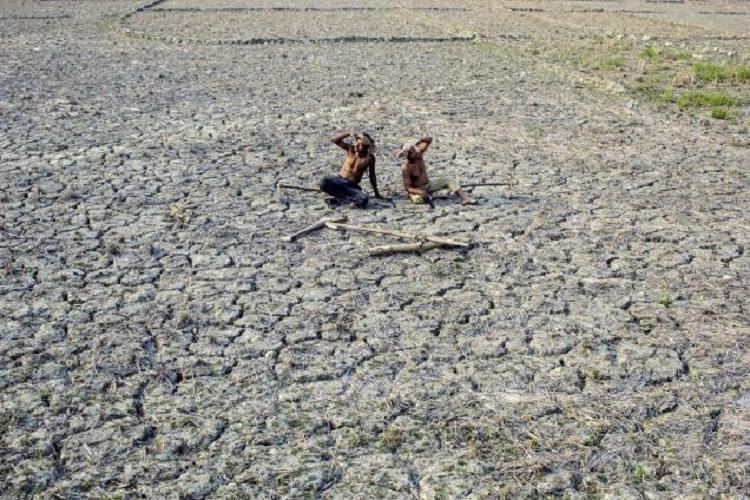 Andhra seeks Rs 680 crore for drought relief as IMD predicts heatwave