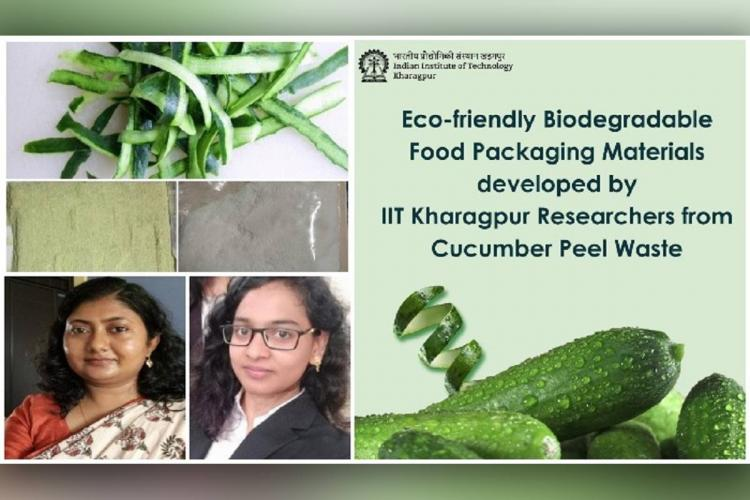 IIT Kharagpur researchers develop eco-friendly food packaging material with cucumber peels