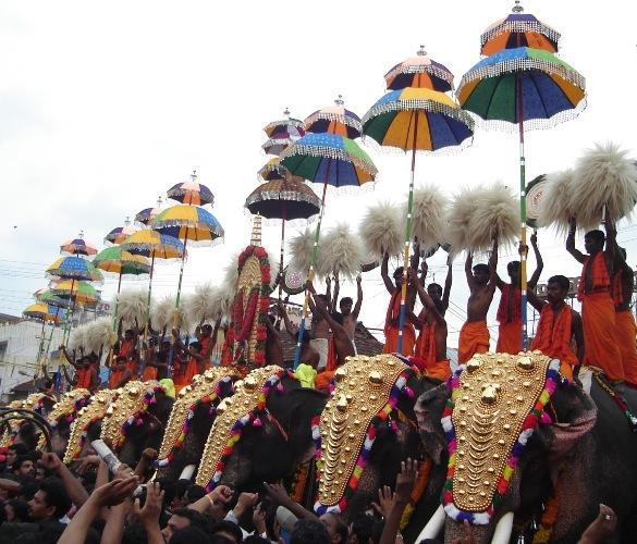 Modi asked to intervene in rising jumbo deaths in Kerala