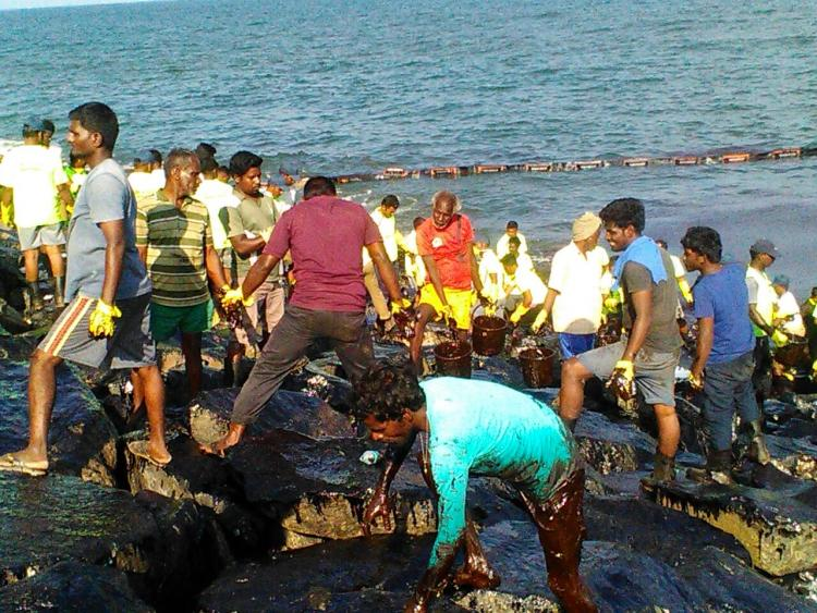 Ennores heroes Meet the people flushing out toxic oil from Chennais coast