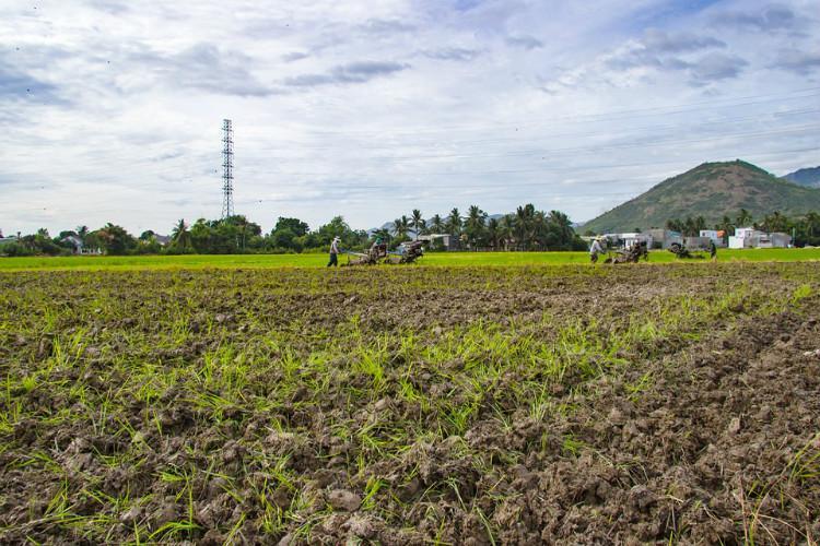 Telangana farmers start using soil health cards