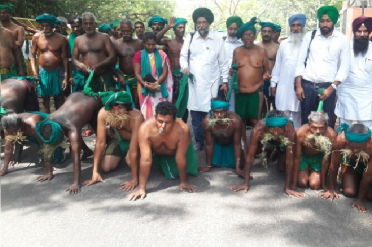 TN farmers go down on all fours say theyve been reduced to animals on Day 36 of protests