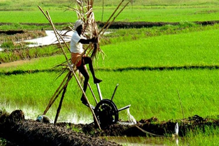 After a spate of farmer suicides Kerala govt to extend moratorium on loans