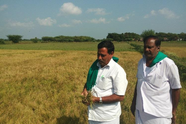 Big blow to TN farmers SC stays Madras HCs order to waive all farm loans relief for TN govt
