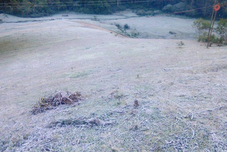 Munnar at -2 degrees TNs Ooty at 5 degrees Blanket of frost welcomes tourists
