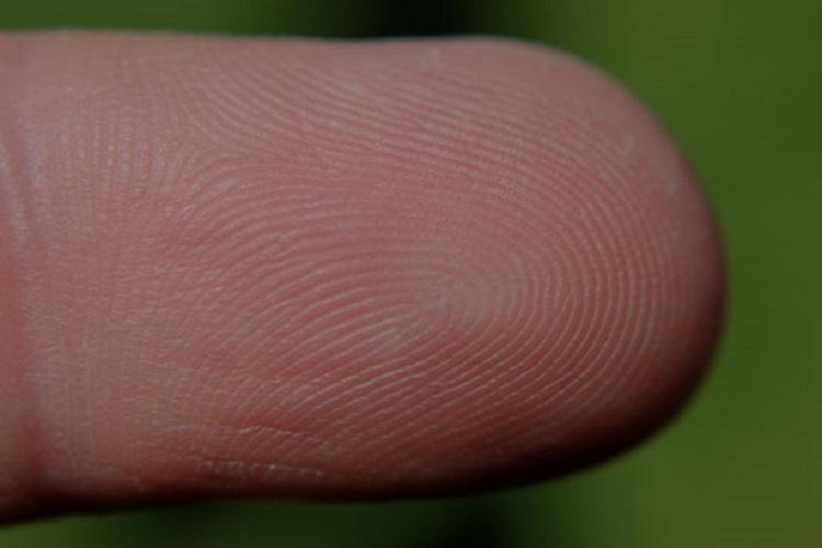 Whodunit How fingerprinting has inspired writers