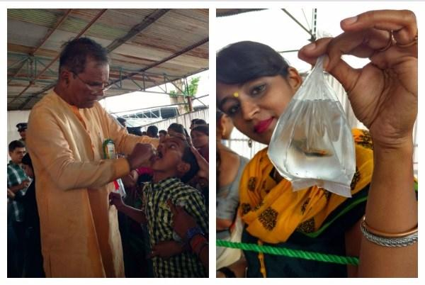 Hundreds of people queue up in Hyderabad to swallow fish
